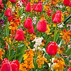 Shakespeare's Tulips by BH Neely