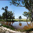 Outback  2 by John Van-Den-Broeke