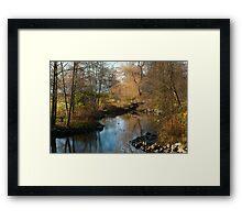 Bridge in Stanley Park Framed Print