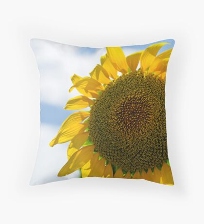 Little Miss Sunshine - Darling Downs Qld Australia Throw Pillow