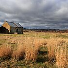 Convict barn in the sunshine - Ross, Tasmania by clickedbynic