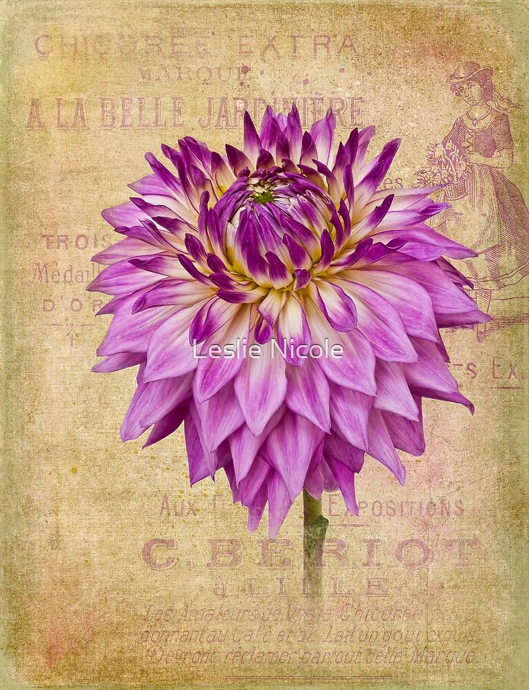 A La Belle Jardiniere by Leslie Nicole