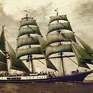 Alexander von Humboldt by Dominika Aniola