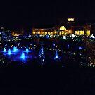 GardenFest of Lights 2011 by AJ Belongia