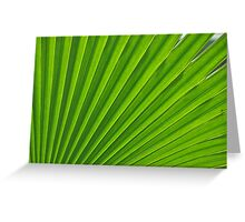 fresh green leaf Greeting Card