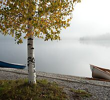 Autumn Boats by Ari Salmela