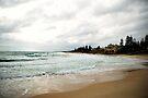 Cottesloe Beach by Richard Owen