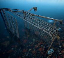 Shopping trolley, Rotherhithe, 30 seconds by tubb