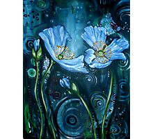 Blue Poppies - Finding Beauty in Chaos Series Photographic Print