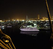 Alicante Marina at Night by JayFarrell