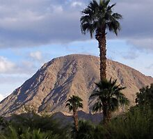 EISENHOWER PEAK-PALM DESERT, CALIFORNIA by JAYMILO