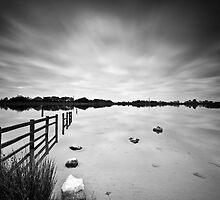 Penyfan Pond 10 by Steve Purnell