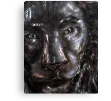 ol Iorn clad Canvas Print