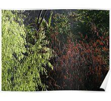 Green And Brown Filigree - Filigrana Verde Y Cafe Poster