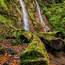 Grey Mares Tail Waterfall by Adrian Evans