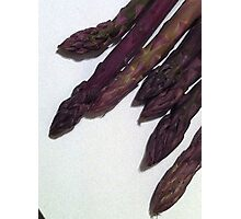 Asparagus Purple Photographic Print
