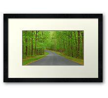 Winding Road to Somewhere Framed Print
