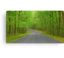 Winding Road to Somewhere Canvas Print