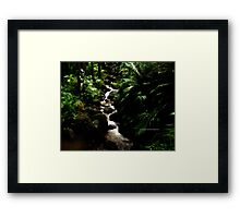 hawaiian botanical gardens V Framed Print
