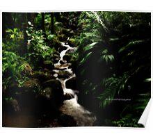 hawaiian botanical gardens V Poster