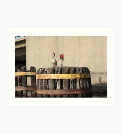 Goose on Barge Bumper Art Print