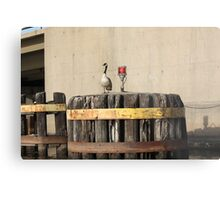 Goose on Barge Bumper Metal Print