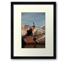 Great Blue Heron on Red Rock Framed Print