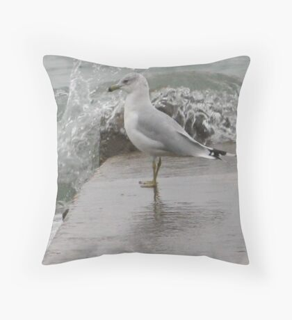 Seagull on end of pier. Throw Pillow