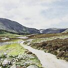 Road through Glen Esk by Joyce Grubb