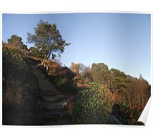 Steep path to Leith Hill tower. Poster