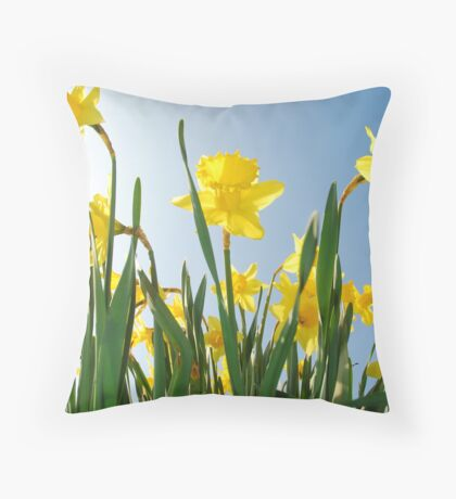 Towering daffodils  Throw Pillow
