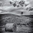 Hay Bale by Ian English