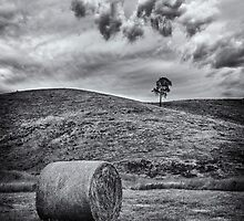 Hay Bale by Ian English