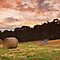 Hay Bales, Waterloo, Tasmania #2 by Chris Cobern