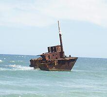 MV Sygna - Shipwreck - Stockton Beach by Joe Hupp