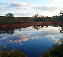 Mirror, Mirror ~~ Ringwood Mill Pond, Ringwood NJ by Jane Neill-Hancock