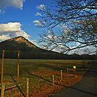 Mountain Top by Lisa G. Putman