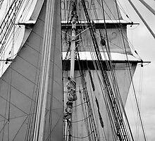 Under Sail by tunna