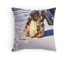 Well, are ya comin? Throw Pillow