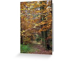 Autumn Forest Greeting Card