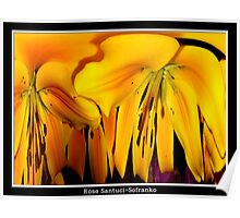 Exotic Orange Lilies - Polar Co-ordinate Special Effect Poster