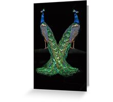 Seeing Double, Two Peacocks  Greeting Card