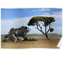 The Coorong - South Australia Poster