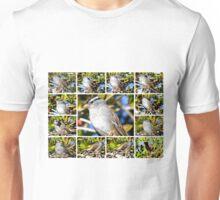 A COLLAGE OF THE NORTHERN MOCKINGBIRD IN A BOTTLEBRUSH BUSH Unisex T-Shirt