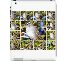 A COLLAGE OF THE NORTHERN MOCKINGBIRD IN A BOTTLEBRUSH BUSH iPad Case/Skin