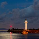 Harbour Entrance by Ray Fowler