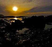 Sun Soaked Rocks by Shaynelee