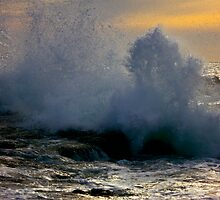 Southern Waves by Shaynelee