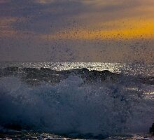 Waves of Phillip Island by Lee Harvey