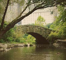 Gapstow Bridge, New York by ilanasal